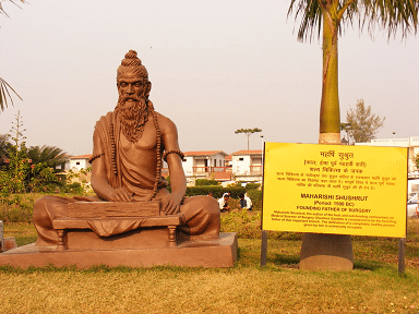 A statue dedicated to Sushruta at the Patanjali Yogpeeth institute in Haridwar.