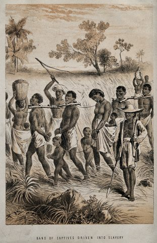 African slaves being taken to market