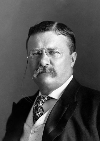 Theodore-Roosevelt-around-1904
